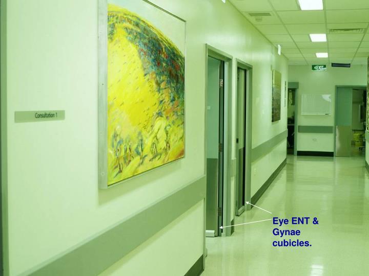 Eye ENT & Gynae cubicles.