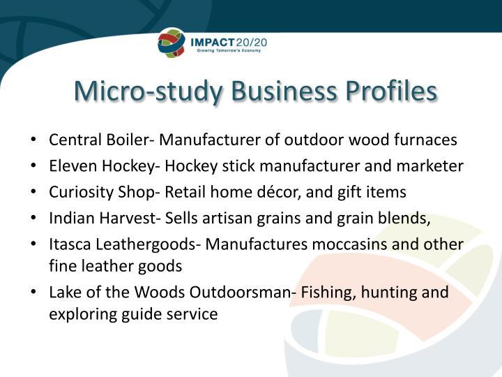 Micro-study Business Profiles