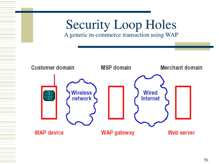 Security Loop Holes