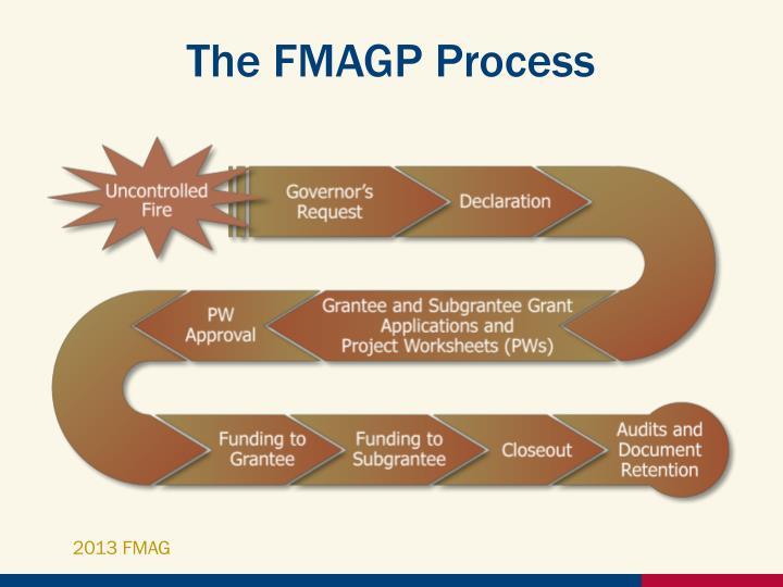 The FMAGP Process