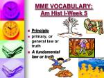 mme vocabulary am hist i week 51