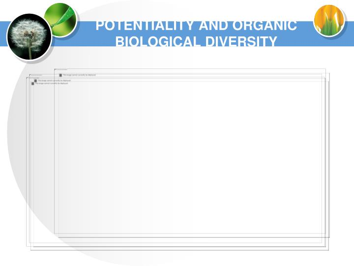 POTENTIALITY AND ORGANIC BIOLOGICAL DIVERSITY
