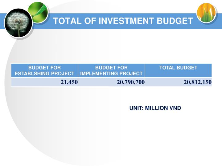 TOTAL OF INVESTMENT BUDGET
