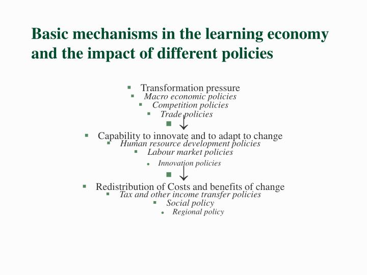 Basic mechanisms in the learning economy and the impact of different policies