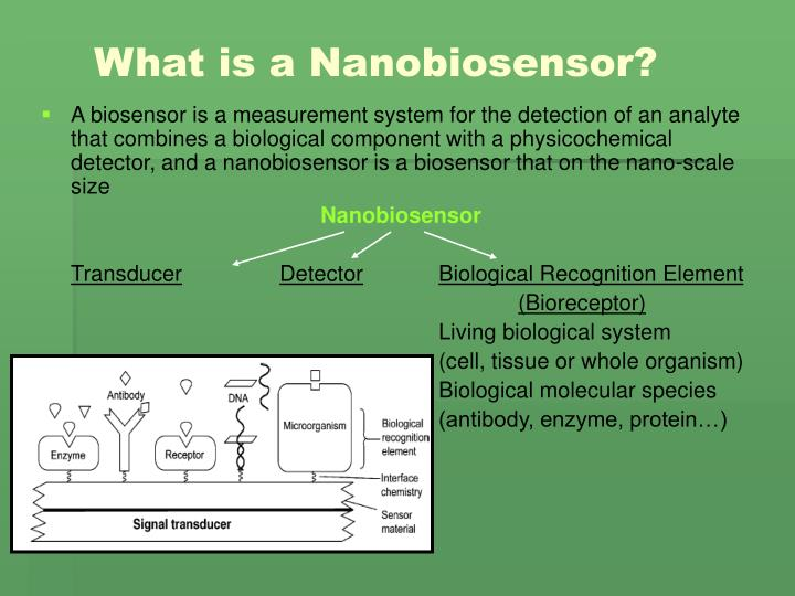 What is a Nanobiosensor?
