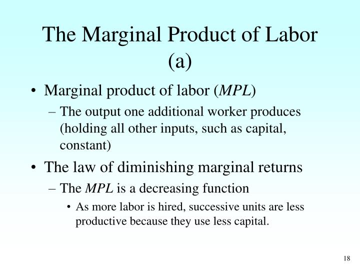 The Marginal Product of Labor (a)