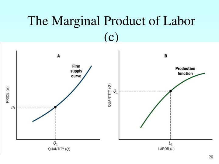 The Marginal Product of Labor (c)