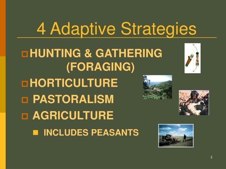 4 Adaptive Strategies