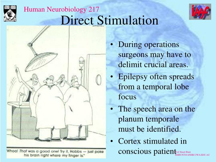 Direct Stimulation