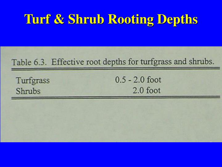 Turf & Shrub Rooting Depths