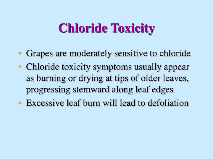 Chloride Toxicity