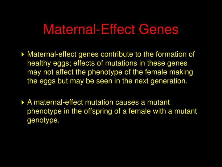 Maternal-Effect Genes