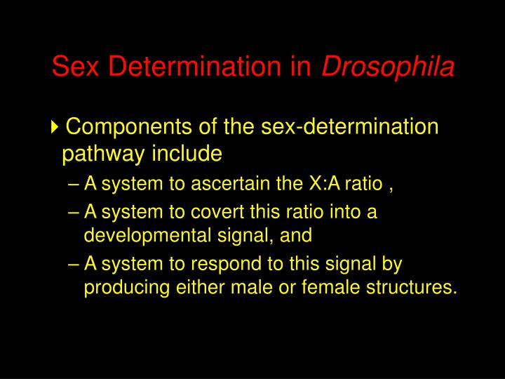 Sex Determination in