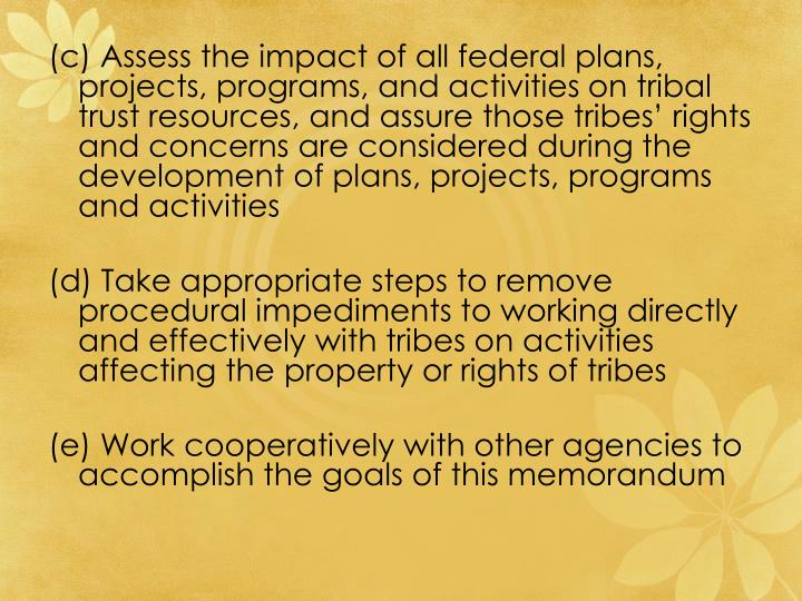 (c) Assess the impact of all federal plans, projects, programs, and activities on tribal trust resources, and assure those tribes