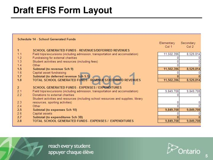 Draft EFIS Form Layout