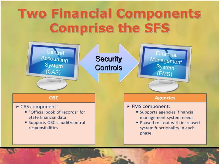 Two Financial Components Comprise the SFS