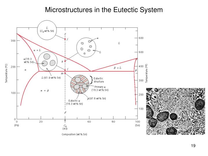 Microstructures in the Eutectic System