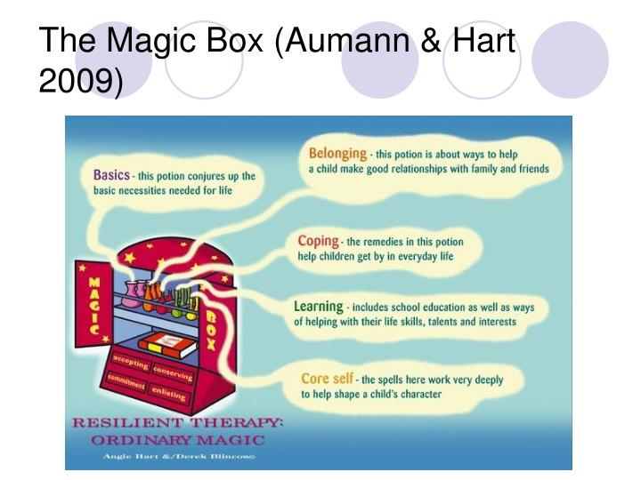 The Magic Box (Aumann & Hart 2009)