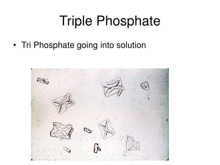 Triple Phosphate
