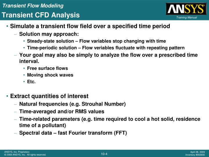 Transient CFD Analysis