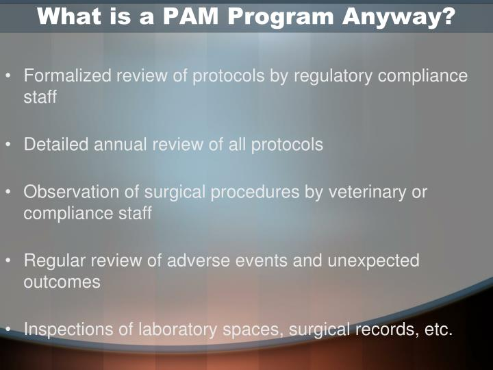 What is a PAM Program Anyway?