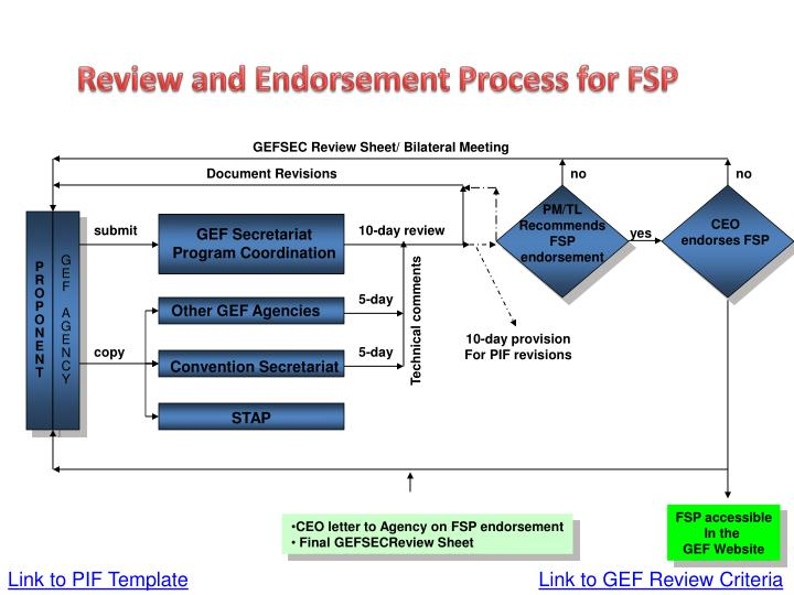 Review and Endorsement Process for FSP