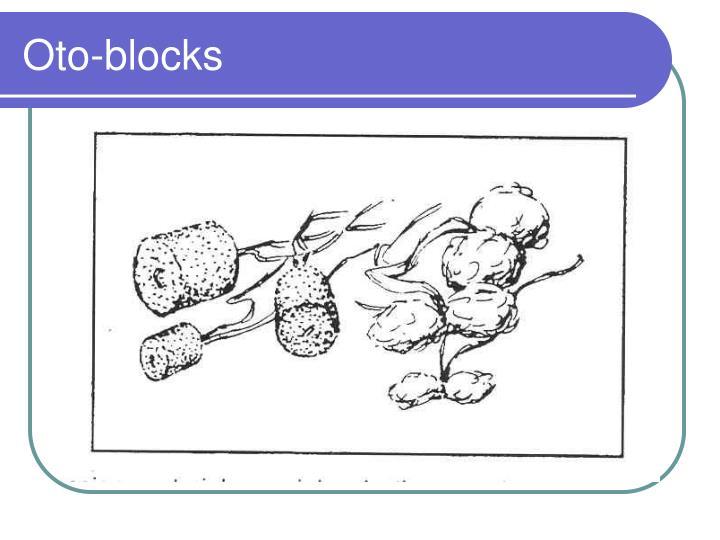 Oto-blocks