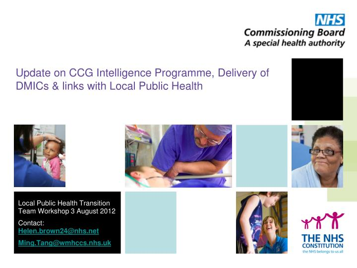 Update on CCG Intelligence Programme, Delivery of DMICs & links with Local Public Health