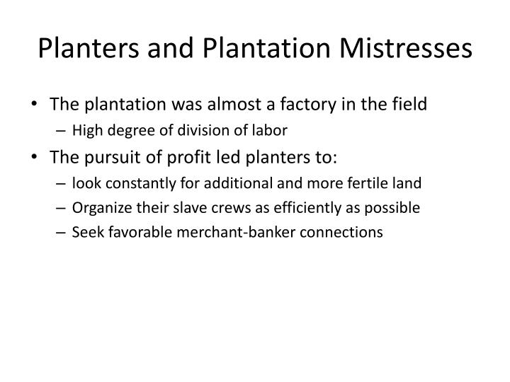 Planters and Plantation Mistresses
