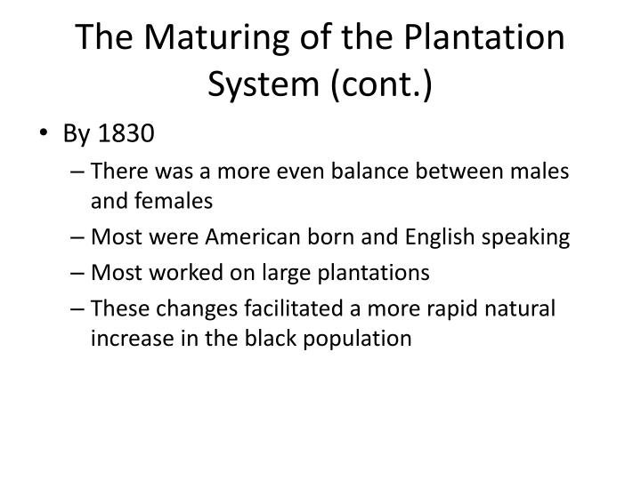 The Maturing of the Plantation System (cont.)
