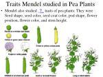 traits mendel studied in pea plants