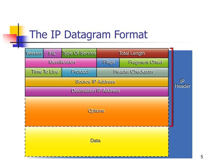 The IP Datagram Format