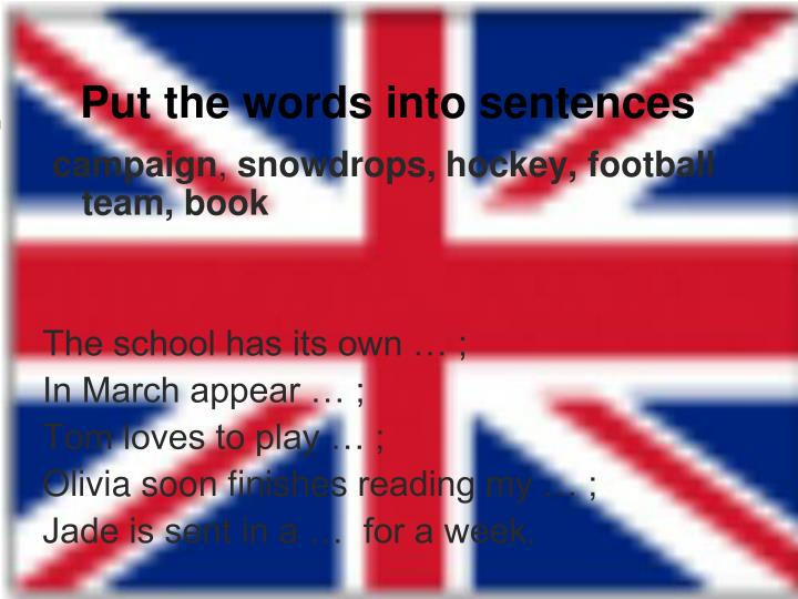 Put the words into sentences