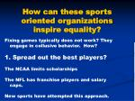 how can these sports oriented organizations inspire equality