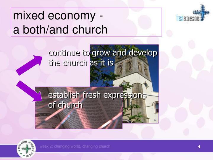 mixed economy -