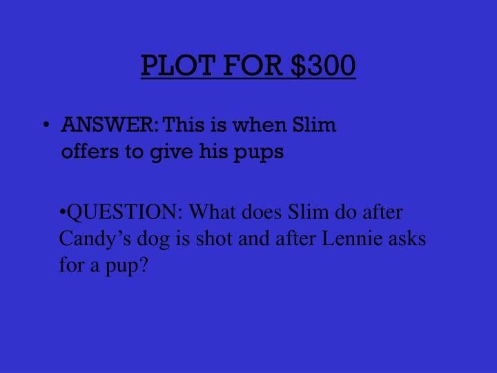 PLOT FOR $300