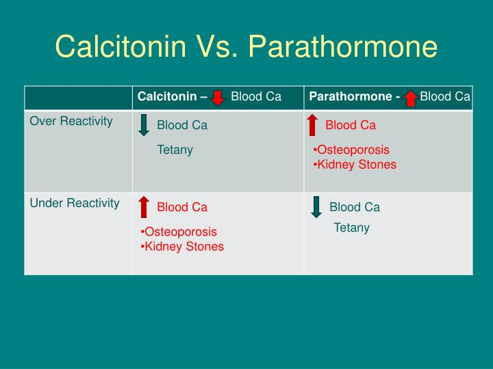 Calcitonin Vs. Parathormone