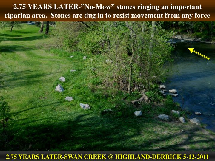 "2.75 YEARS LATER-""No-Mow"" stones ringing an important riparian area.  Stones are dug in to resist movement from any force"