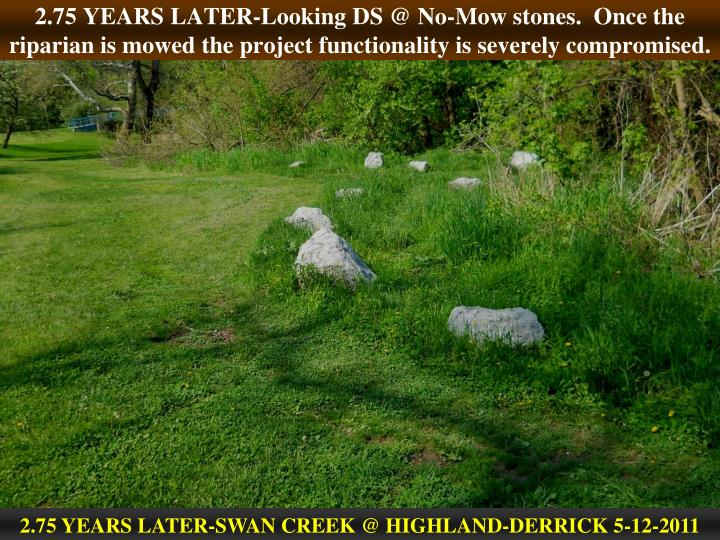 2.75 YEARS LATER-Looking DS @ No-Mow stones.  Once the riparian is mowed the project functionality is severely compromised.