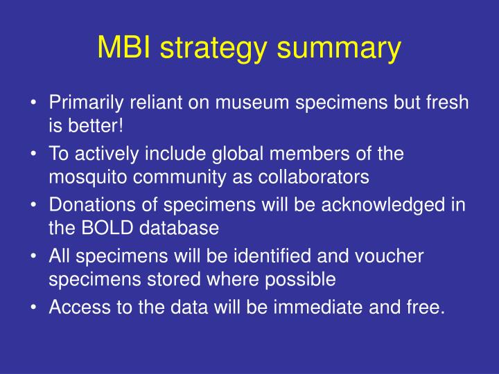 MBI strategy summary