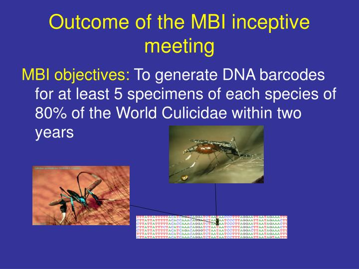 Outcome of the MBI inceptive meeting