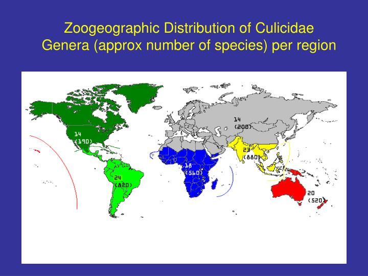 Zoogeographic Distribution of Culicidae