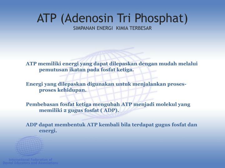 ATP memiliki energi yang dapat dilepaskan dengan mudah melalui pemutusan ikatan pada fosfat ketiga.