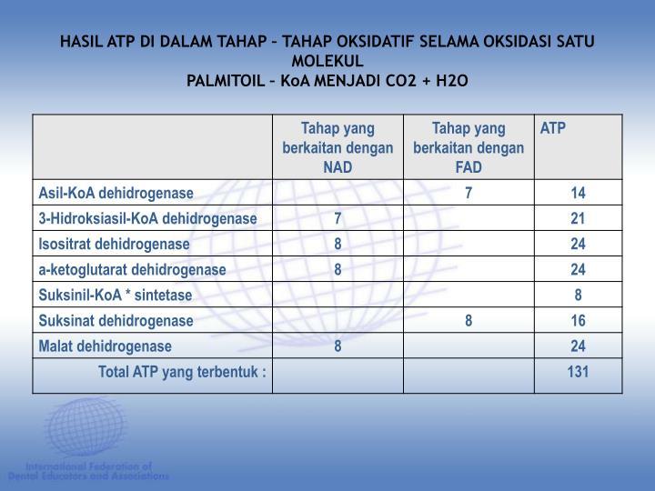 HASIL ATP DI DALAM TAHAP – TAHAP OKSIDATIF SELAMA OKSIDASI SATU MOLEKUL