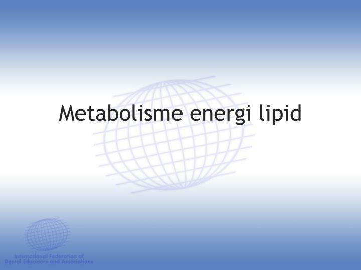 Metabolisme energi lipid