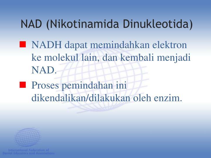 NADH dapat memindahkan elektron ke molekul lain, dan kembali menjadi NAD.