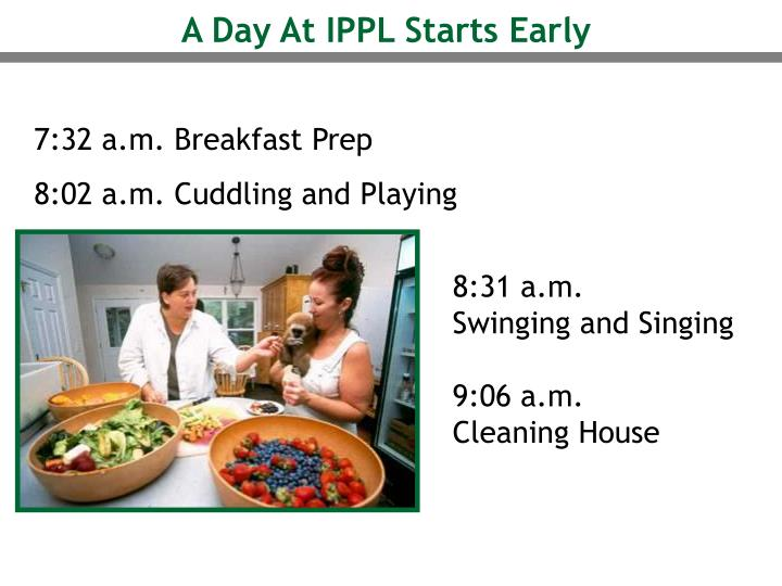 A Day At IPPL Starts Early