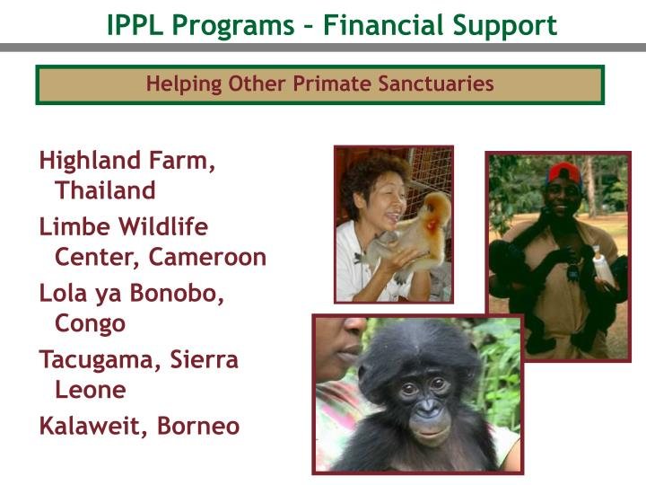 IPPL Programs – Financial Support