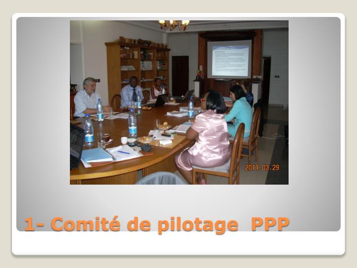 1- Comité de pilotage  PPP