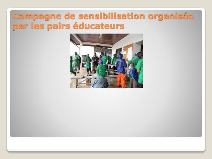 Campagne de sensibilisation organisée par les pairs éducateurs